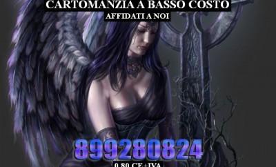 1393454_img_003_b_thumb_big