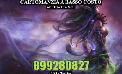 338033Diliana