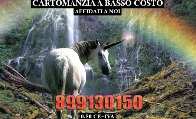 Animali - Unicorno fantasy